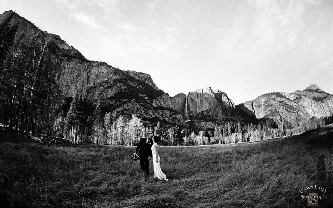 Yosemite Destination Elopement: Sarah + Mike