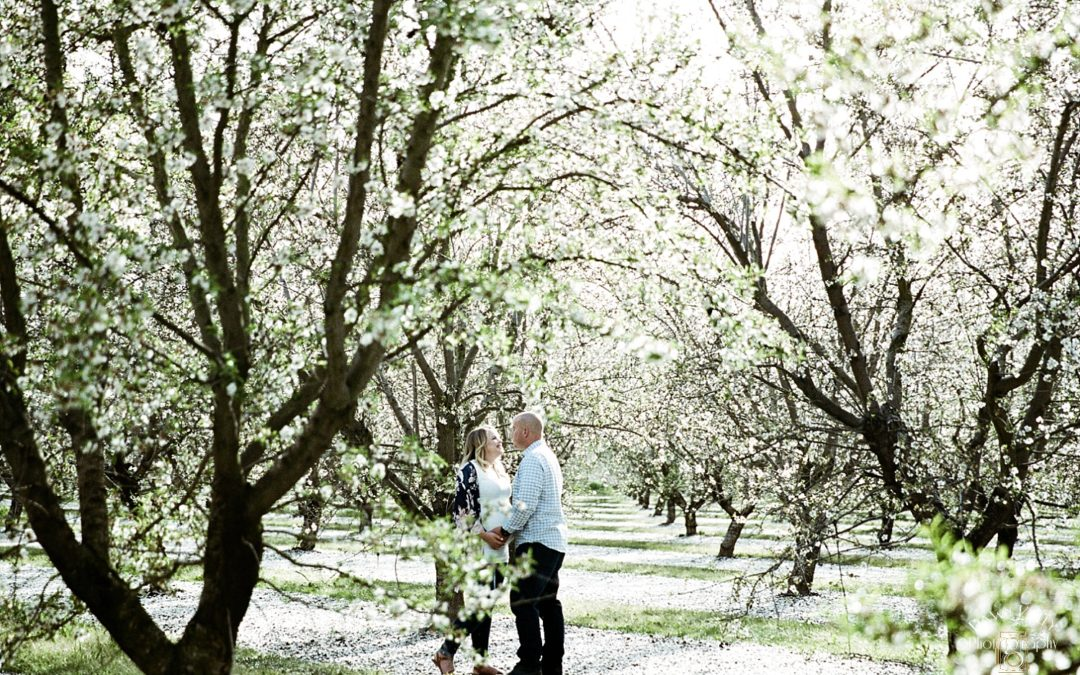 Modesto Almond Blossom Maternity Session: Shoshana + Travis