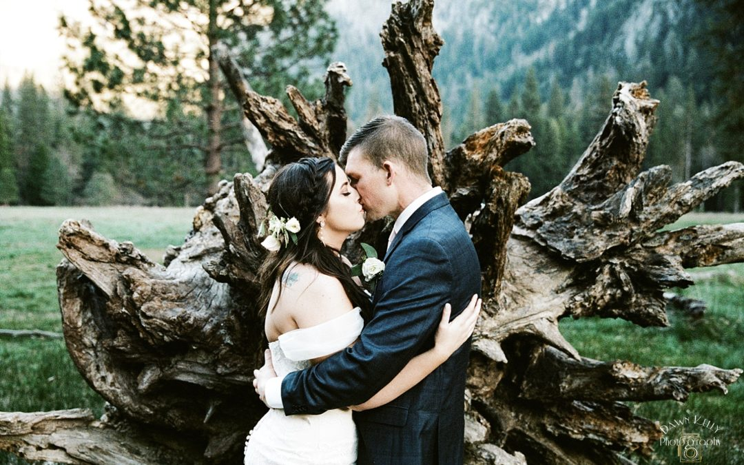 El Capitan Meadow Yosemite Elopement: Chandler + Jaedy