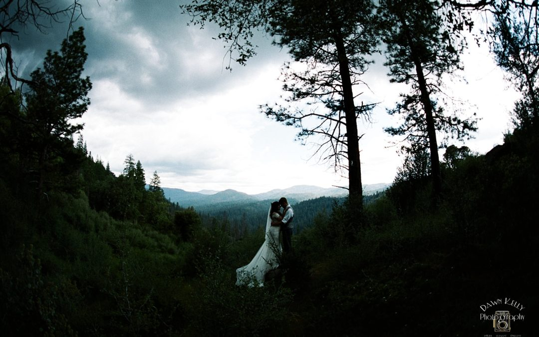 The Redwoods in Yosemite Wedding: Mallory + Scott
