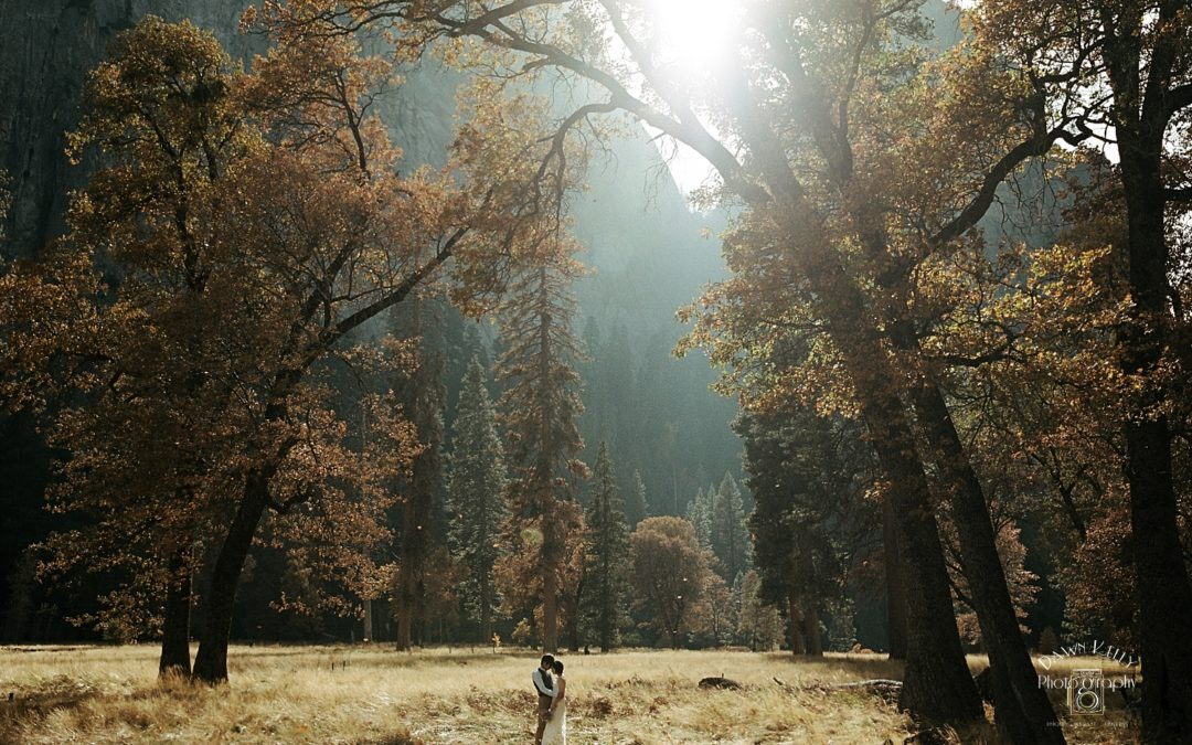 Fall Yosemite Elopement: Nami + Yuta