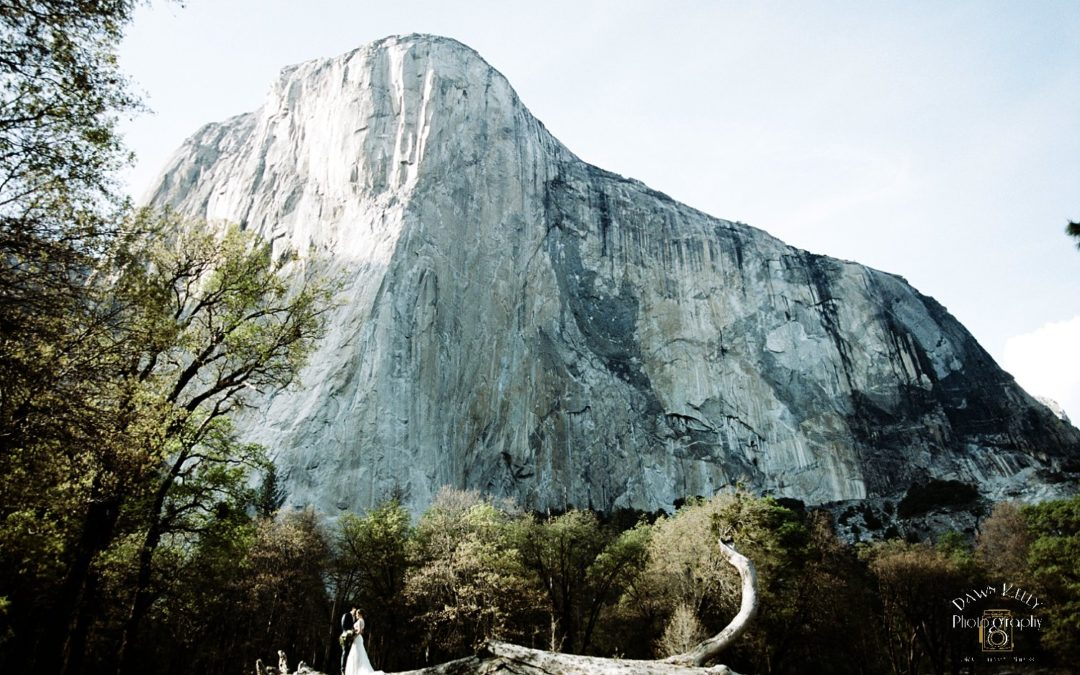El Capitan Meadow Elopement: Katie + Don