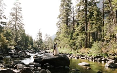 Fall Yosemite Wedding Portraits: Liz + Edgar