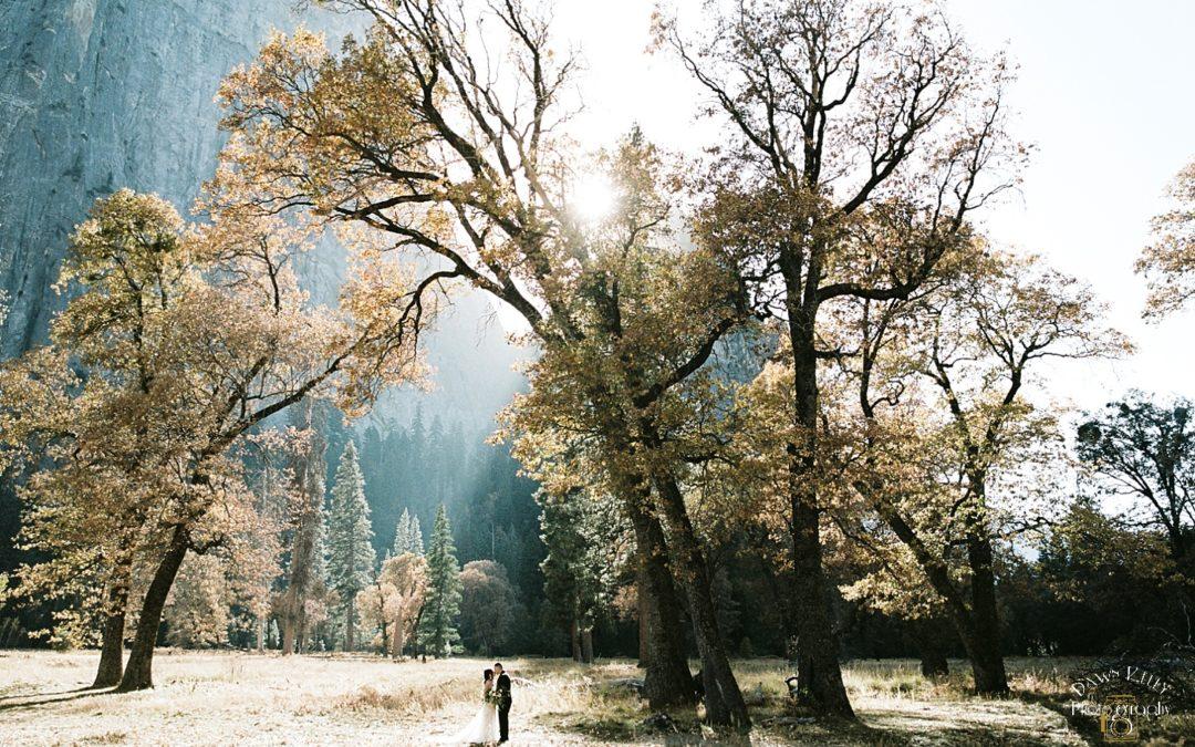 Fall Yosemite Elopement: Brenda + Fabian