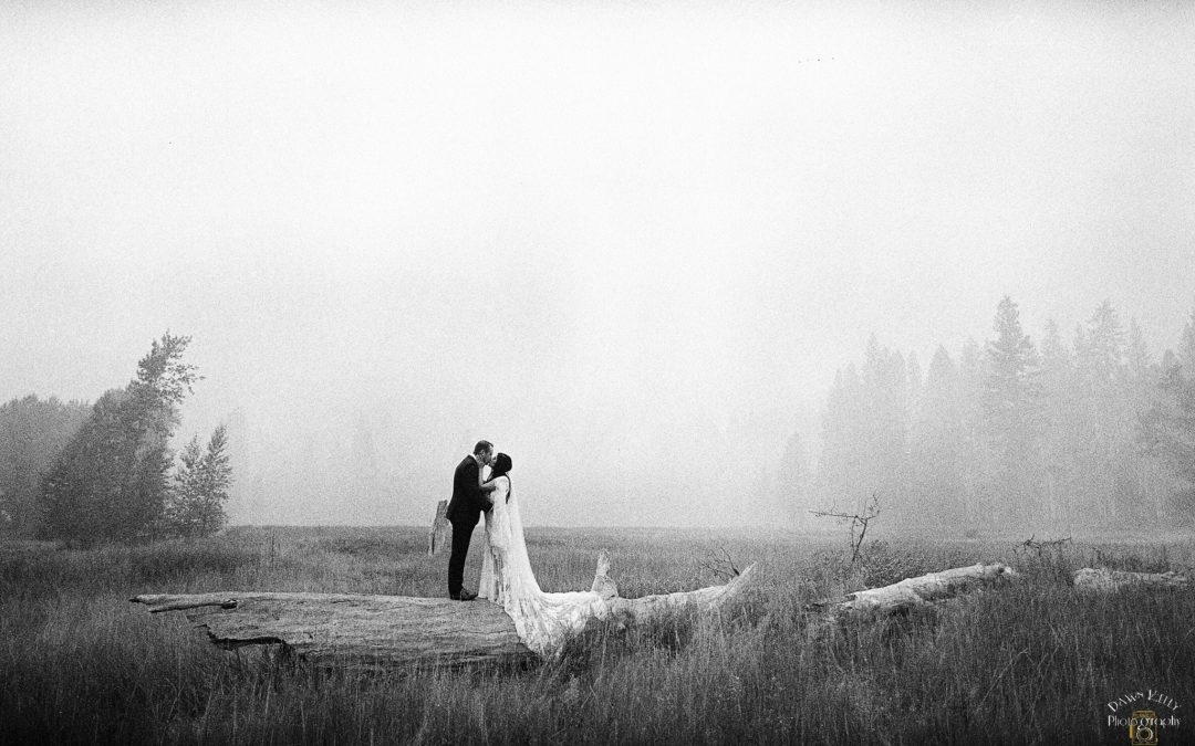 Smoky Yosemite Elopement: Courtney + Ben