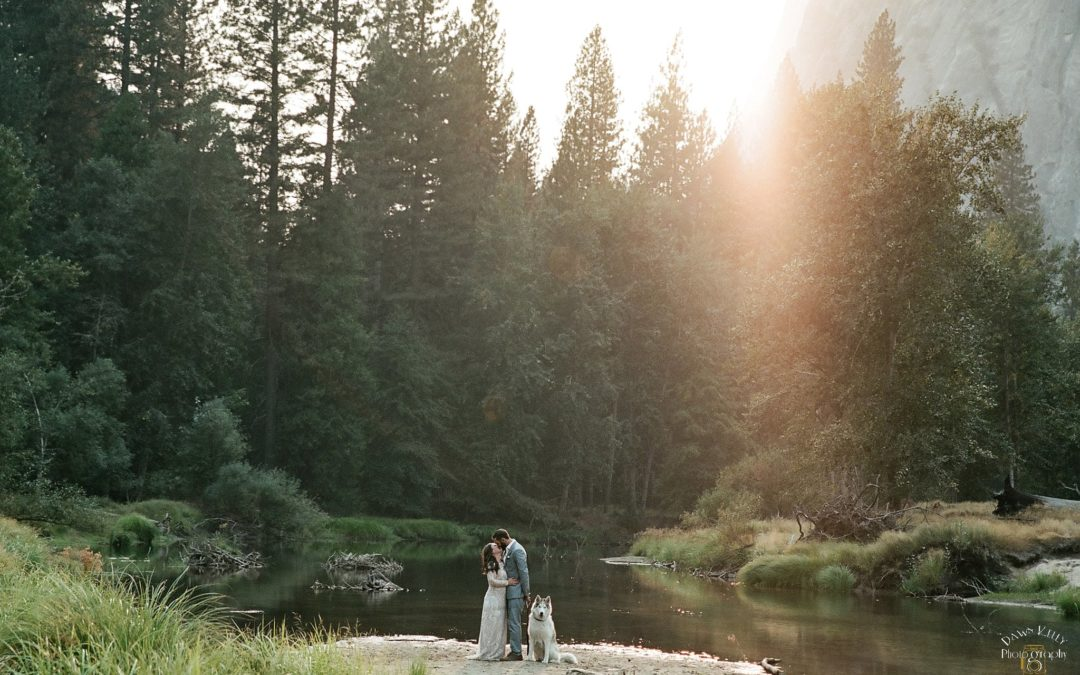 Dog-Friendly Yosemite Elopement: Julie + Nick